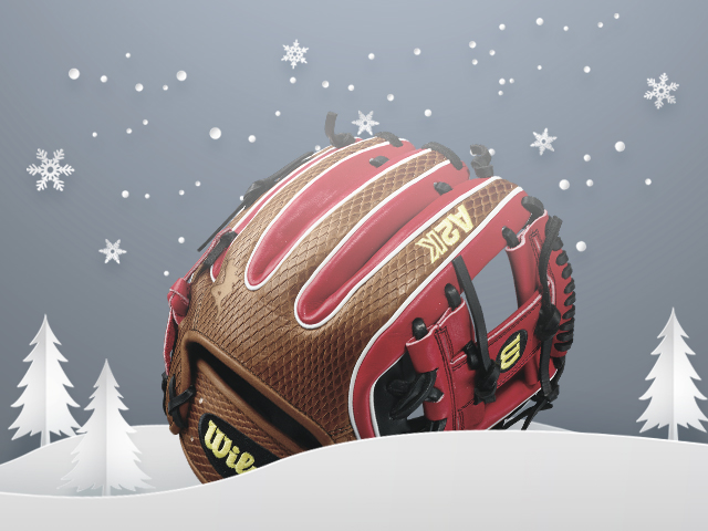 Discount Wilson Baseball Gloves